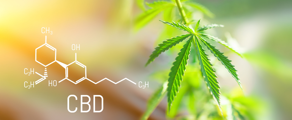 CBD—What is it and how can it help me?